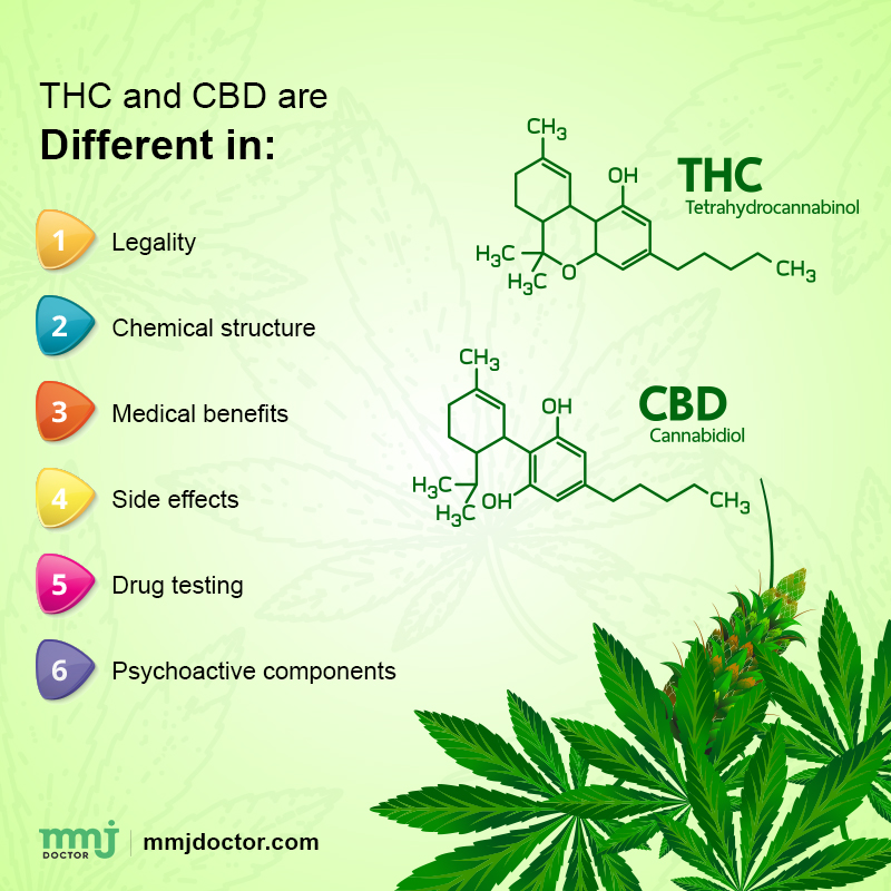 THC and CBD difference