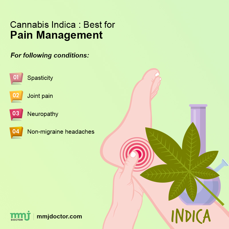 Cannabis pain management