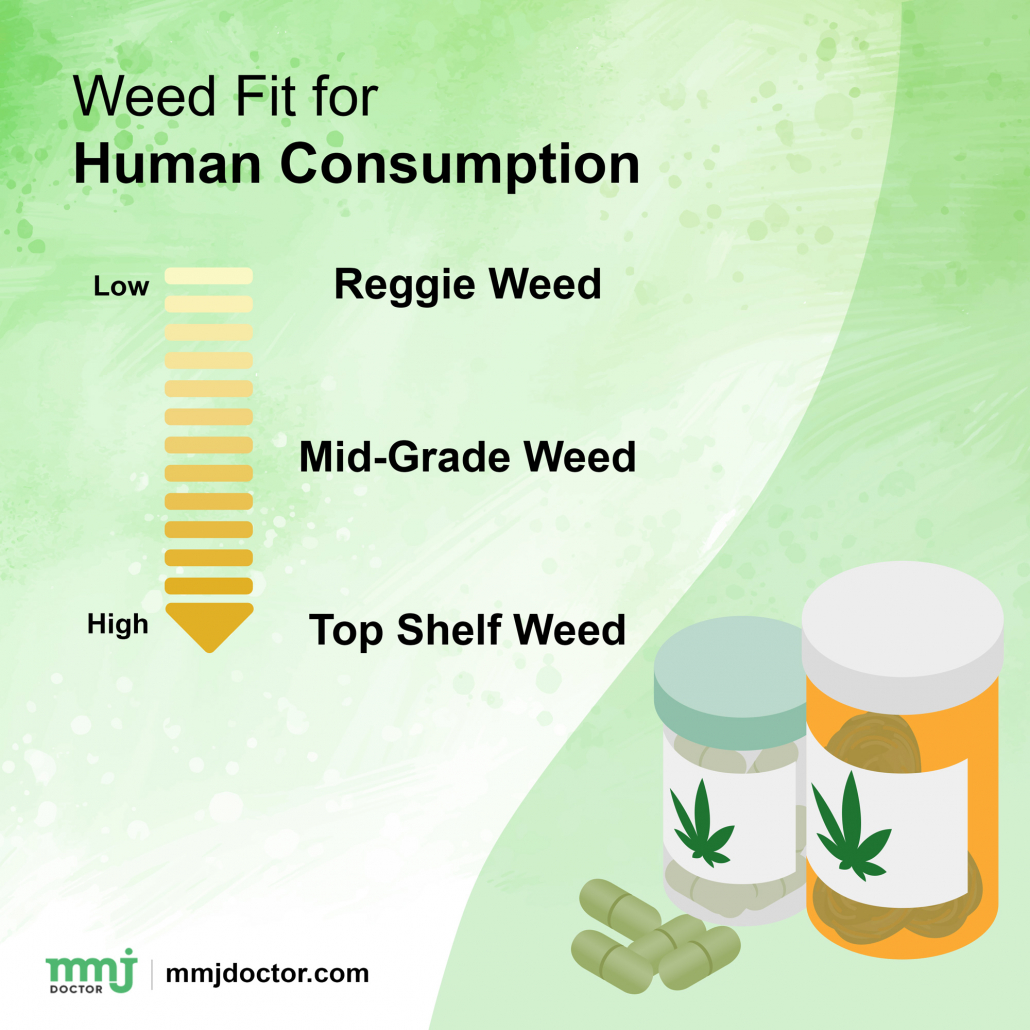 Weed Edible for Consumption