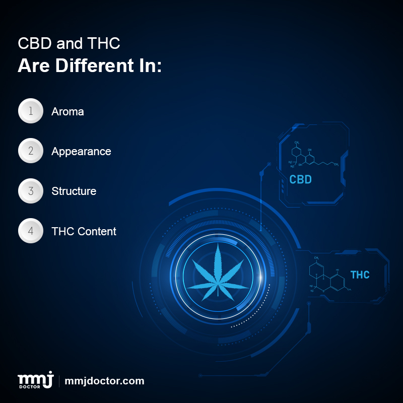 CBD and THC difference