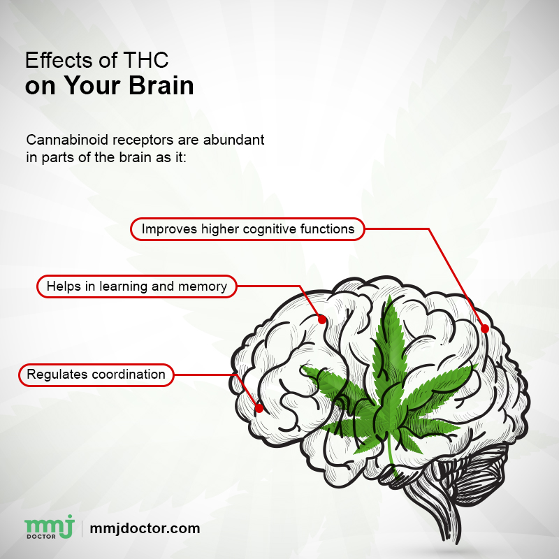 effects of THC
