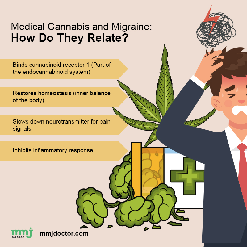 cannabis for migraine