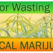 MEDICAL MARIJUANA FOR WASTING SYNDROME/CACHEXIA