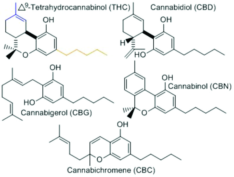 Canabinoids-mmjdoctor-medical-marijuana-card-doctor-online-420evaluations-insomnia