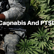 POST-TRAUMATIC STRESS & MEDICAL MARIJUANA
