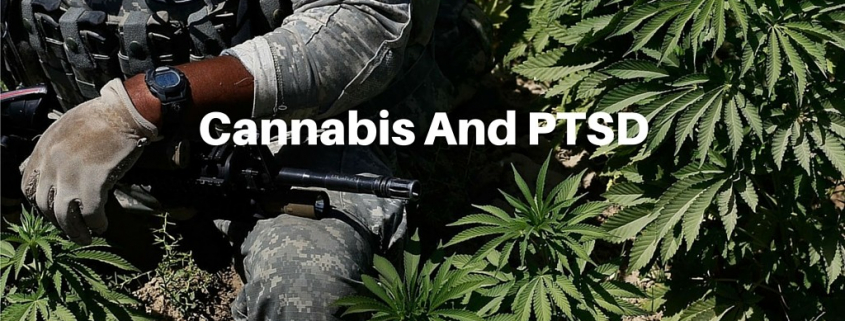 Medical marijuana for PTSD. Medical marijuana for veterans with PTSD - MMJ DOCTOR