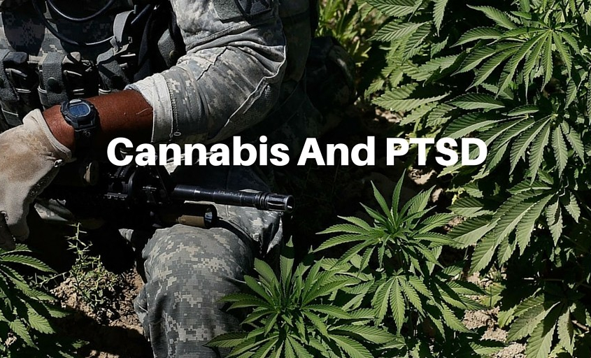 Cannabis-and-Post-Traumatic-Stress-Disorder-PTSD-mmj-doctor