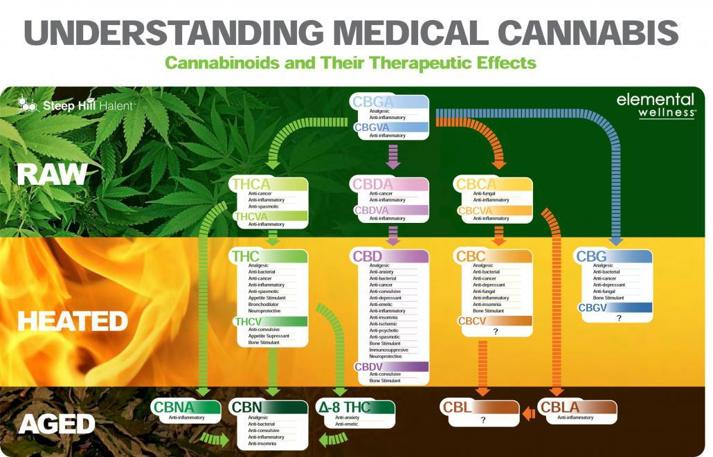Medical-Cannabis-components-therapeutic-effects