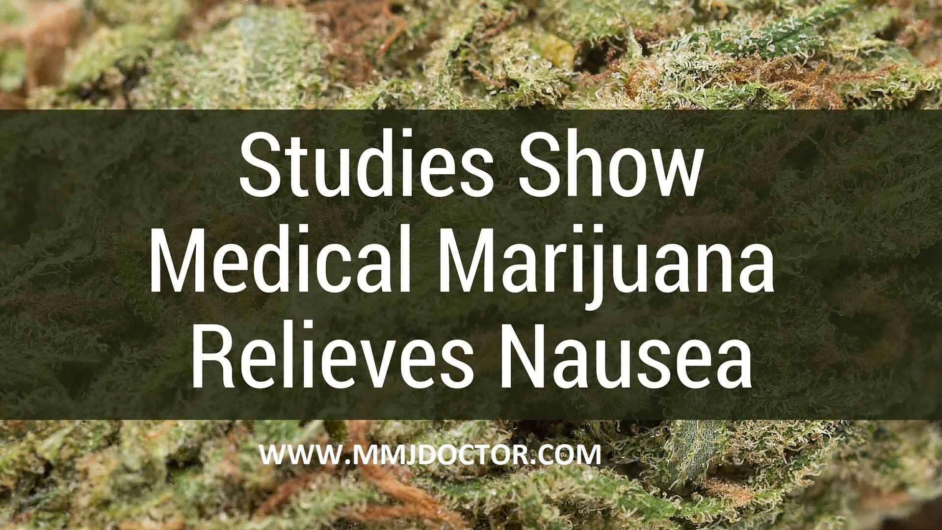 Nausea-and-medical-marijuana-mmjdoctor