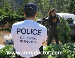 WILL YOU GET ARRESTED MAILING MARIJUANA? - MMJ DOCTOR