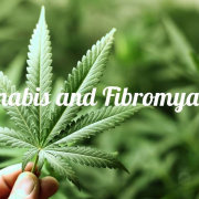 FIBROMYALGIA & MEDICAL MARIJUANA
