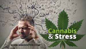 Medical cannabis and stress.