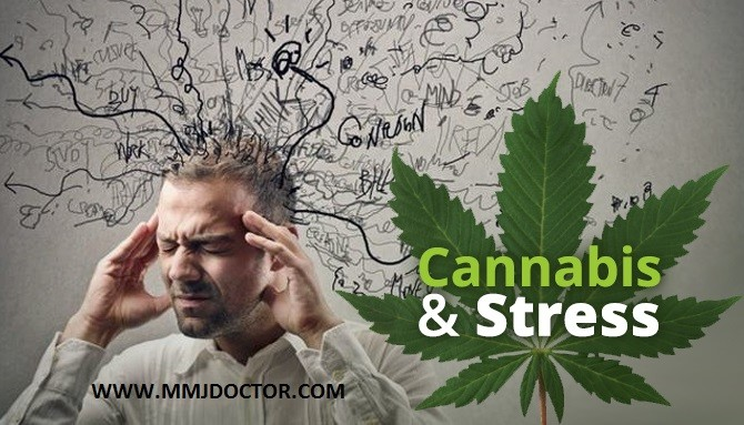 Stress, Anxiety, depression and Medical Marijuana