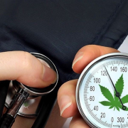 MEDICAL MARIJUANA & HIGH BLOOD PRESSURE