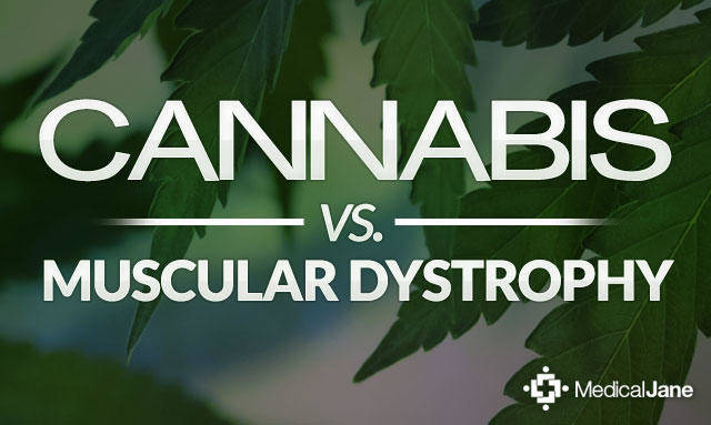 cannabis vs muscular dystrophy mmjdoctor