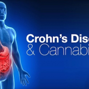 CROHN'S DISEASE & MEDICAL MARIJUANA
