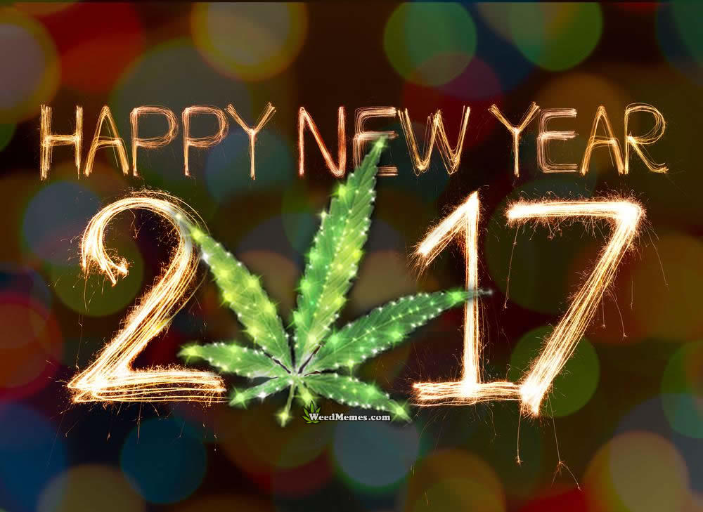 happy-new-year-weed-memes-mmj-doctor-medical-marijuana-card-doctor-420evaluations
