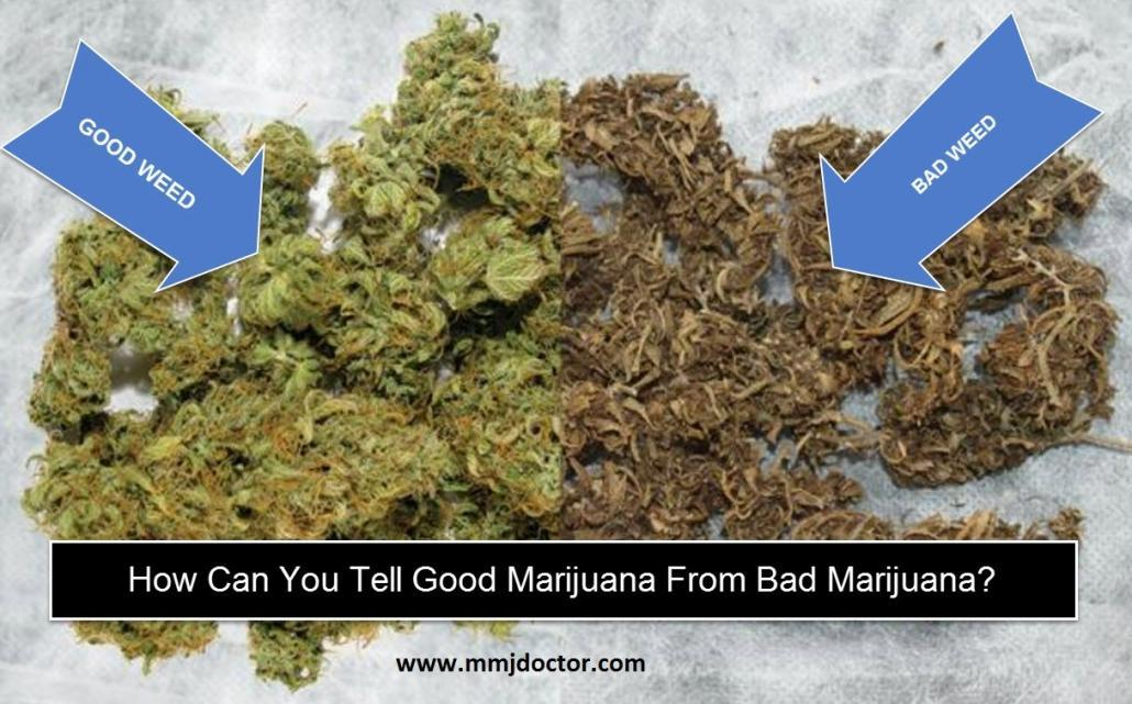 how-to-tell-if-you-have-bought-good-weed-or-bad