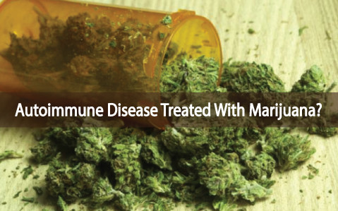 http://mmjdoctor.com/wp-content/uploads/2017/01/medical-marijuana-autoimmune-disease-treated-with-medical-cannabis.jpg