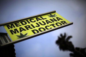 medical marijuana card doctor california mmjdoctor