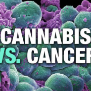 CANCER & MEDICAL MARIJUANA | MMJ DOCTOR ONLINE