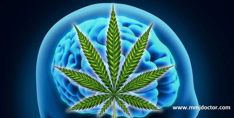 new cannabis drug able to reduce seizures by 39 for some epilepsy patients mmjdocto