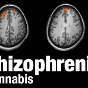 SCHIZOPHRENIA & PSYCHOSIS & MEDICAL MARIJUANA