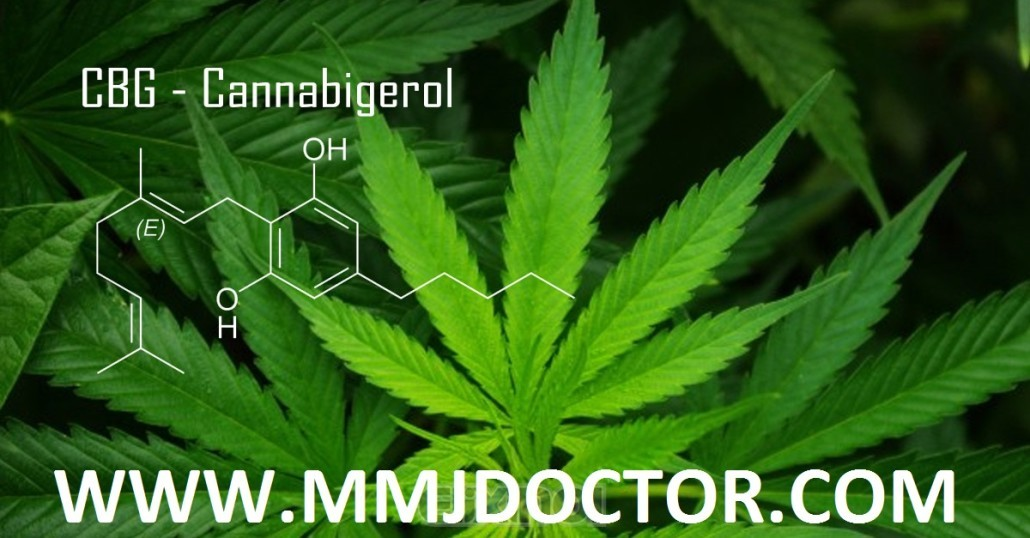 CBG-Cannabigerol-medical-marijuana-card-doctor