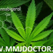CBG Cannabigerol medical marijuana card doctor