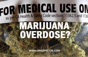 MEDICAL-MARIJUANA-CANNABIS-OVERDOSE-MMJDOCTOR