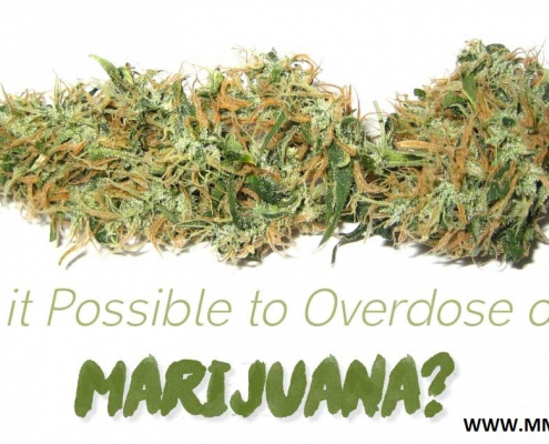 Can You Overdose On Marijuana