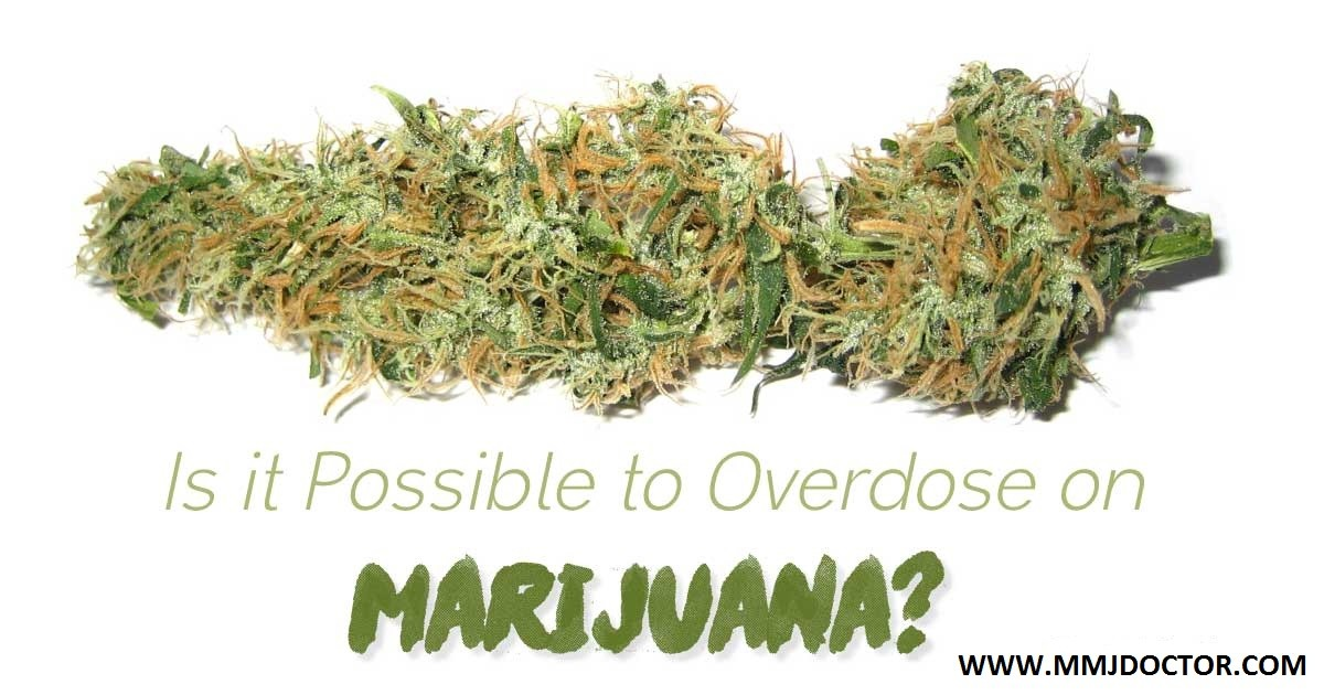 Is It Possible To Overdose On Marijuana?