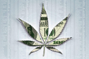 Make money on marijuana.
