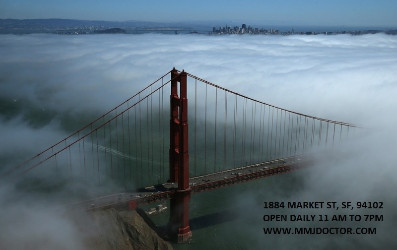 san-francisco-dispensaries-cannabis-lounges-mmjdoctor-city-fog