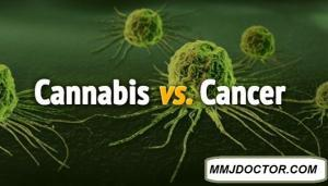 Medical Marijuana for Cancer - mmjdoctor