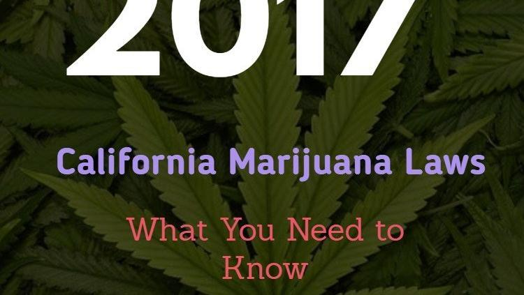 2017 California Marijuana Laws What You Need to Know