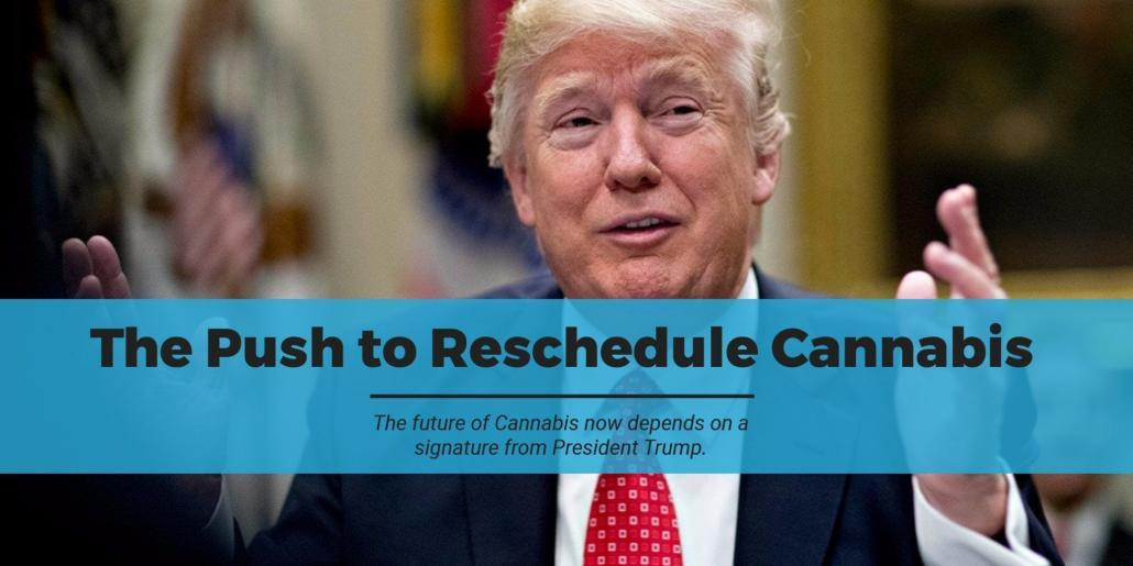The Push to Reschedule Cannabis - MMJ DOCTOR