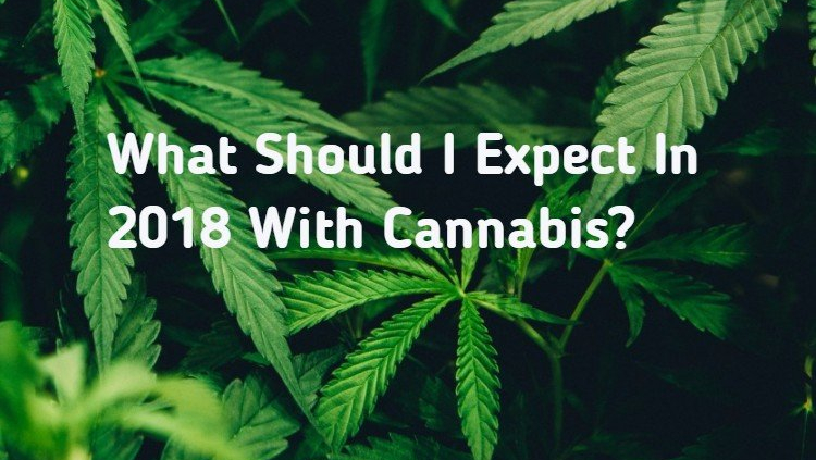 What Should I Expect In 2018 With Cannabis-