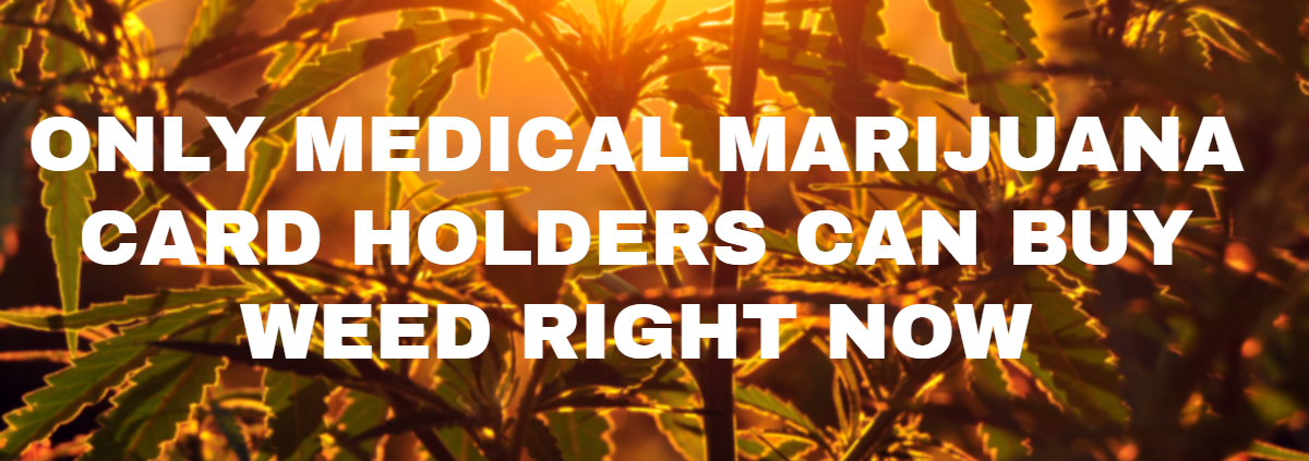 ONLY MEDICAL MARIJUANA CARD HOLDERS CAN BUY WEED RIGHT NOW