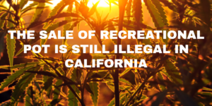 THE SALE OF RECREATIONAL POT IS STILL ILLEGAL IN CALIFORNIA