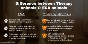 Esa Letter for therapy