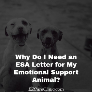 ESA Letter for My Emotional Support Animal
