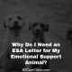 Why Do I Need an ESA Letter for My Emotional Support Animal