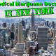 MMJ Doctor in New York
