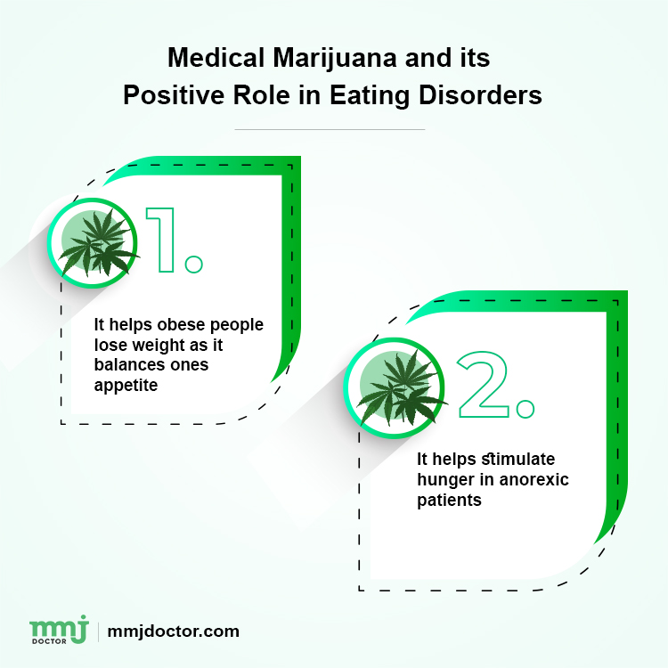 Cannabis Therapy For Both Anorexia And Obesity 1 1