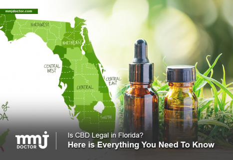 is cbd oil legal in florida for dogs