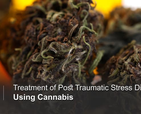 Medical Marijuana and Post Traumatic Stress Syndrome