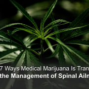 spinal ailments and marijuana