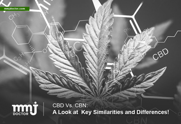 CBD and CBN similarities