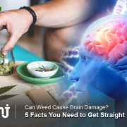 Can Smoking Marijuana Every Day Cause Brain Damage MMJDOCTOR